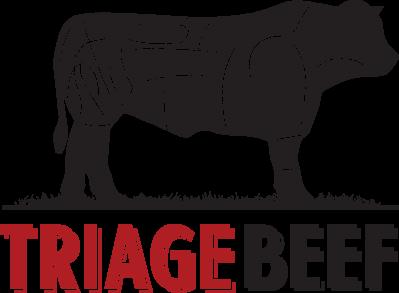 triage-logo-page